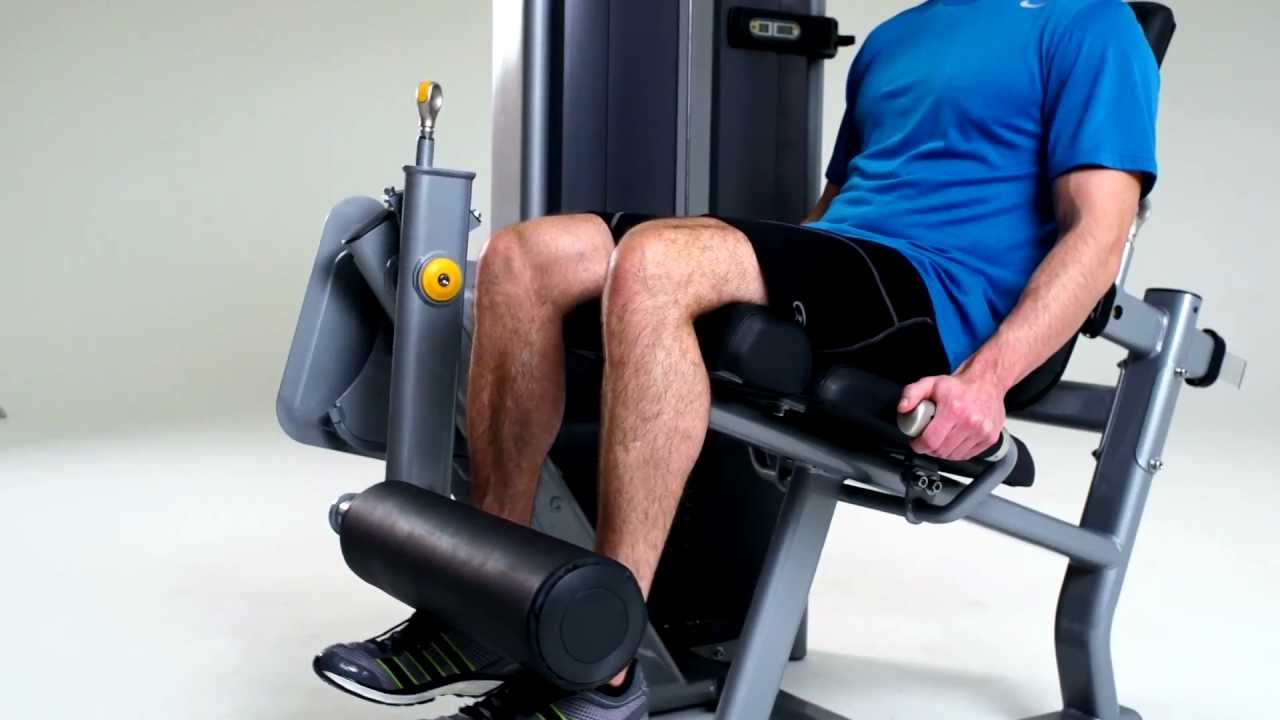 equipamentos profissionais de musculação